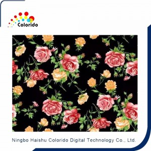 Belt type Digital textile printer for precise localization printing